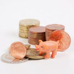 principios de educación financiera